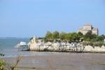 Talmont-sur-Gironde(33).JPG
