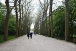 Le château Chenonceau (2).JPG