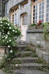 Rochefort-en-Terre(34).JPG