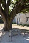 Talmont-sur-Gironde(20).JPG